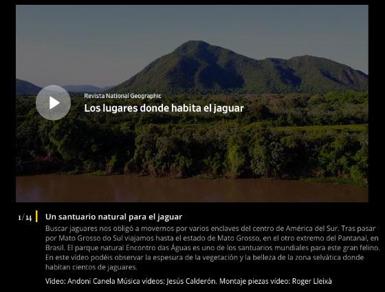 National Geographic con el proyecto «PANTERAS»